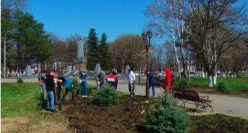 Озеленение Парка 30 лет Победы